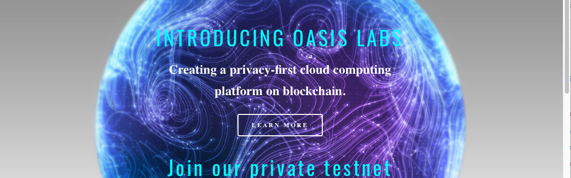 Oasis Labs is an interesting new project in the blockchain